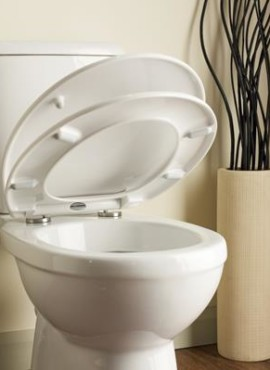 WC Seats/Toilet Seats Products